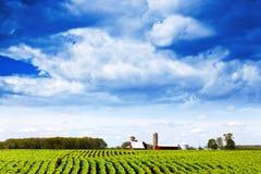 Land-Landschaft Lizenzfreie Stockfotos