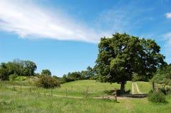 Land-Landschaft Lizenzfreies Stockfoto
