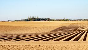 Land met voren in lijn voor de cultuur van aardappels wordt gewerkt die stock fotografie