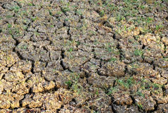 Land mit trockenem gebrochenem Boden stockbild