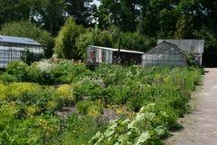 Land och biologisk trädgårdsnäring Boschzigt Royaltyfri Fotografi
