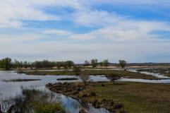 Land och vatten Royaltyfria Bilder