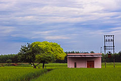 A LAND OF PEACEFULNESS - LANDSCAPE - THE HUT AND THE TREE Royalty Free Stock Images
