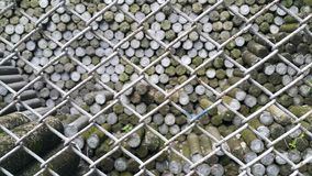 Land pins were barred with steel cages. To prevent intruders Royalty Free Stock Images