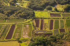 Land plots on island of Kauai from aircraft. Land plots for farming on interior of island of Kauai in the state of Hawaii are viewed from aircraft in the spring Royalty Free Stock Images