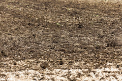 Land plowed field. A tractor plowed field agricultural land. Spring, sown close-up Stock Image