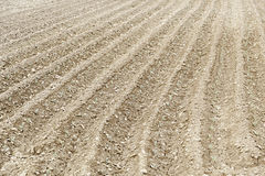 Land plowed for planting Stock Images