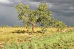 Land before rain Stock Images