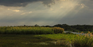 Land after raining. Sunlight from sky to land Royalty Free Stock Photo
