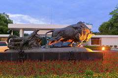 Land reclamation cattle statue night view Royalty Free Stock Photography