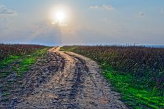 Land road to the sea shore. With the sun and in middle of the nature Stock Photos