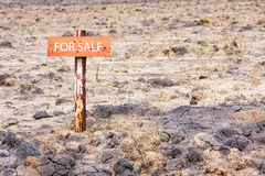 Land for sale Royalty Free Stock Images