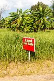 Land for sale sign Royalty Free Stock Photography