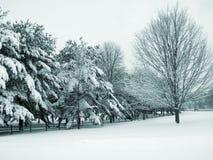 Land-Schnee Stockfotografie