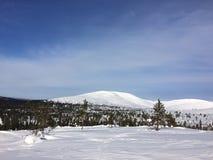 Land-Schnee Lizenzfreie Stockfotografie