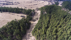 Land & skog Royaltyfria Bilder