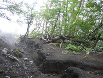Land Slide - Natural cataclysm. Land slide in forest at the altitude of 2500m on mount Fuji. Harsh conditions, strong winds, big temperature differences and the Royalty Free Stock Image
