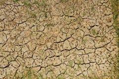 Land som delas i risfält, Royaltyfria Foton