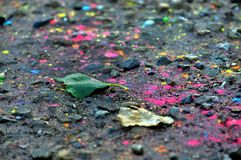 The land sprinkled with multicolored paint Royalty Free Stock Photo