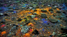 The land sprinkled with multicolored paint Royalty Free Stock Image