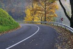 Land-Straße im Herbst Stockbild