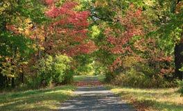 Land-Straße in im Hinterland New York Lizenzfreie Stockfotografie