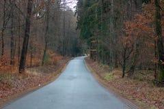 Land-Straße mit Bäumen in Deutschland Langgöns lizenzfreie stockfotos
