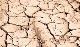 Land in summer heat. Parched earth in summer heat. In place of fertile soil with plants is cracked dead surface of dry mud stock photos