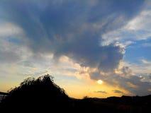 Land, sunset,. Tree, bloom, blue, green, Sky Royalty Free Stock Photo