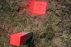 Land survey. Boundary stone marked with neon colour Royalty Free Stock Photography