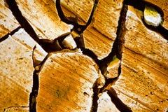 Land texture Stock Photos