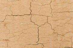 Land texture Stock Photo