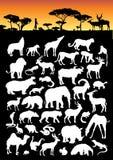 Land-Tier-Ansammlung lizenzfreie abbildung