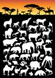 Land-Tier-Ansammlung Stockbild