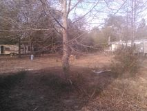 Land und Baum Stockfoto