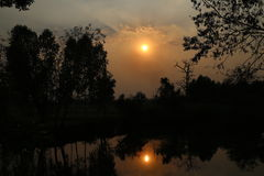 Land und Baum mit Sonnenunterganghintergrund Stockbilder