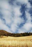 Land und Himmel Lizenzfreie Stockfotografie