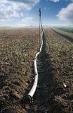 Land und Schlauch für die Bewässerung stockbild