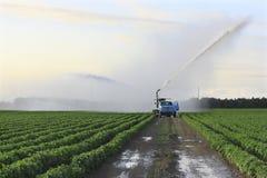 Land van het Landbouwbedrijf van de irrigatie 3 Stock Afbeelding