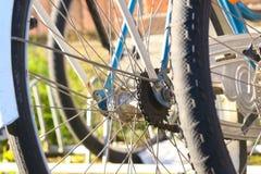 Land Vehicle, Bicycle Wheel, Bicycle, Spoke Stock Photography