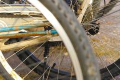 Land Vehicle, Bicycle Wheel, Road Bicycle, Spoke Royalty Free Stock Image