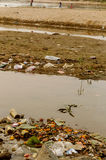 Land and water pollution Stock Images