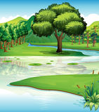 Land and water resources. Illustration of the land and water resources Royalty Free Illustration