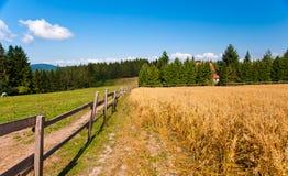 Landansicht mit Zaun Stockbild