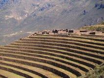landar terrasserad peruansk pisac Arkivbilder