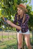 Landarbeiter der jungen Frau unter den Weinbergen Stockfotografie