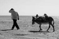 Landarbeiter und sein Esel stockbild