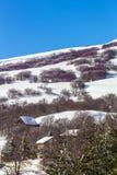 Landascape d'hiver Photographie stock