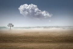 Landascape del deserto fotografie stock