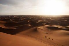 Landascape del desierto Fotografía de archivo